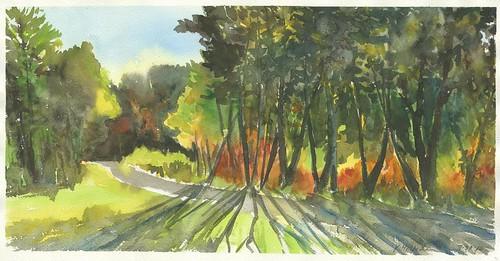 Sketch: Necedah National Wildlife Refuge