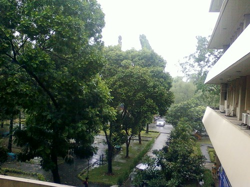 after raining @campus