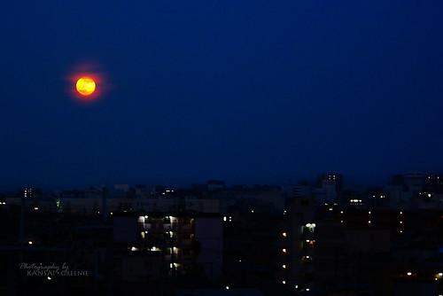 Orange moon over Osaka.