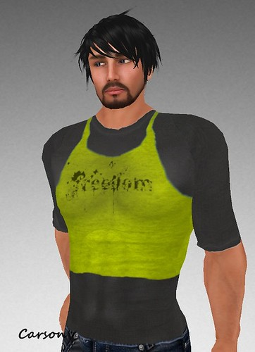 MHOH4 # 139 - Dogstar Mens Casuals Freedom Double Layered Tank Top