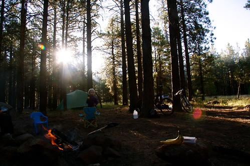 Morning in camp