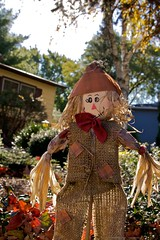 Fall Garden Strawman