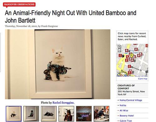 United Bamboo Cat Calendar Party: Racked.com