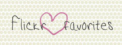 flickr-favorites-banner