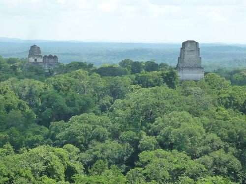 Blick von Templo IV ueber Tikalruinen