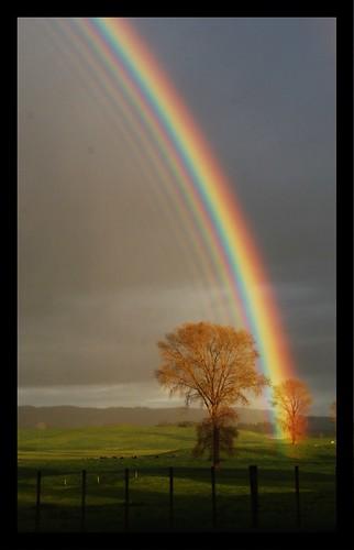Opinions on Rainbow