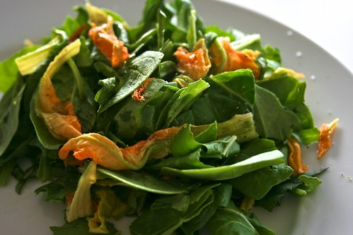 Simple Spinach & Squash Blossom Salad