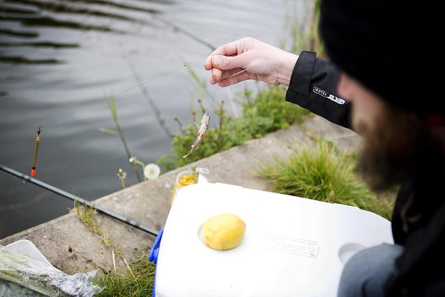 Fishing_27