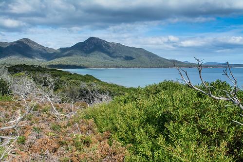 Tasmanie - Freycinet