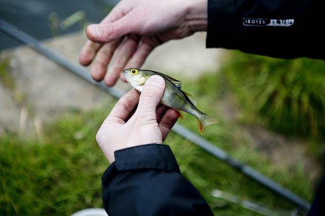 Fishing_12
