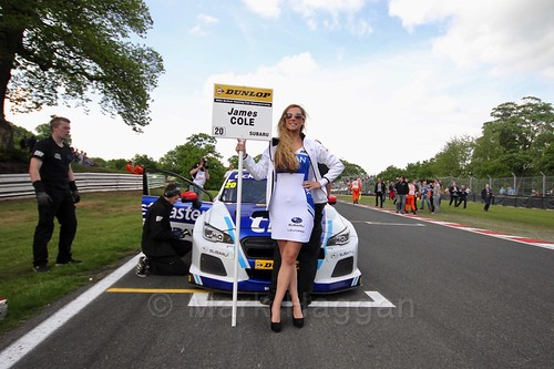 James Cole on the BTCC grid at Oulton Park, May 2017