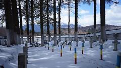 Cimitirul eroilor de la Tabla Butii