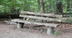 """Die Bank. Die Bänke. Die Sitzbank. Die Sitzbänke. Bank steht auch für Geldinstitut. Dann heißt die Mehrzahl Banken. • <a style=""""font-size:0.8em;"""" href=""""http://www.flickr.com/photos/42554185@N00/33913335583/"""" target=""""_blank"""">View on Flickr</a>"""