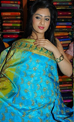 Indian Actress NIKESHA PATEL Hot Sexy Images Set-2  (34)
