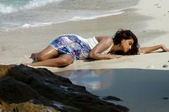 Indian Actress DIMPLE CHOPADE Hot Photos-Set-2 (33)