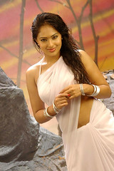 Indian Actress NIKESHA PATEL Hot Sexy Images Set-2  (67)