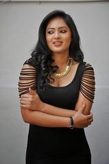 Indian Actress NIKESHA PATEL Hot Sexy Images Set-2  (78)
