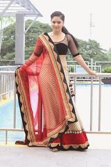 Indian Actress NIKESHA PATEL Hot Sexy Images Set-2  (47)