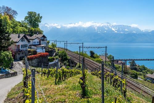 Suisse-01551