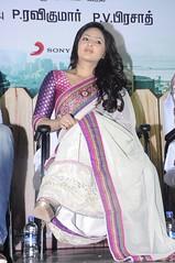Indian Actress NIKESHA PATEL Hot Sexy Images Set-2  (45)