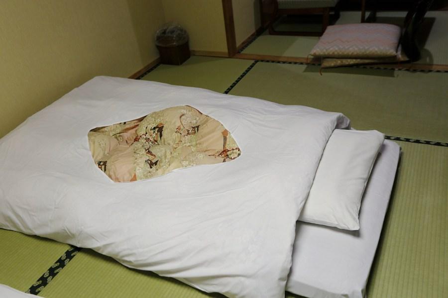 [福島.住宿]大川莊 (Ookawaso).蘆牧溫泉~一泊二食.青山綠水環境優美 @VIVIYU小世界