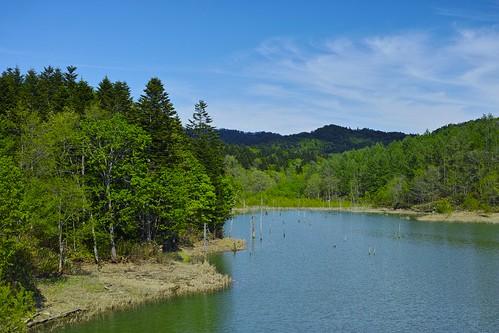 北の湖 夏の始まり
