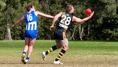 Troy Luff for Balmain Tigers V Norwest Sydney AFL May 2017 0007