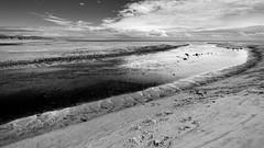 Wansbeck estuary