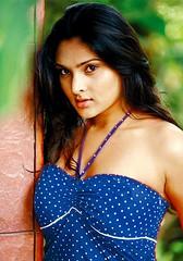 Indian Actress Ramya Hot Sexy Images Set-2  (14)