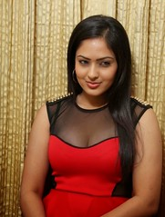 Indian Actress NIKESHA PATEL Hot Sexy Images Set-2  (28)