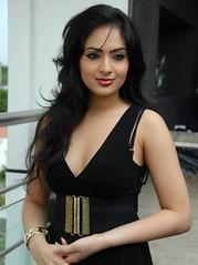 Indian Actress NIKESHA PATEL Hot Sexy Images Set-1 (20)