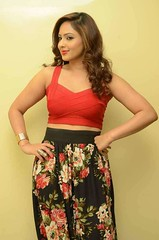 Indian Actress NIKESHA PATEL Hot Sexy Images Set-1 (59)