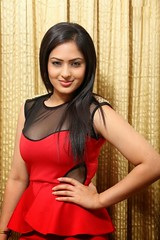 Indian Actress NIKESHA PATEL Hot Sexy Images Set-2  (20)