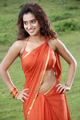 Indian Actress DIMPLE CHOPADE Hot Photos-Set-1 (40)