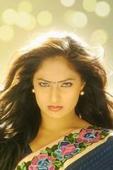 Indian Actress NIKESHA PATEL Hot Sexy Images Set-1 (52)