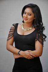 Indian Actress NIKESHA PATEL Hot Sexy Images Set-2  (80)