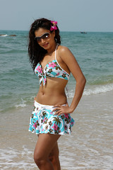 Indian Actress DIMPLE CHOPADE Hot Photos-Set-2 (27)