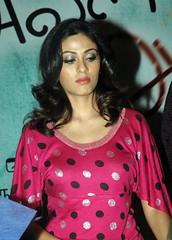 Indian Actress SADA Photos Set-4 (14)