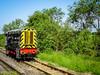 Midland Railway Centre Diesel Gala 2017