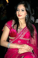 Indian Actress NIKESHA PATEL Hot Sexy Images Set-2  (4)