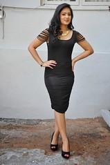 Indian Actress NIKESHA PATEL Hot Sexy Images Set-2  (73)