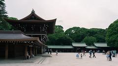 Meiji Shrine...