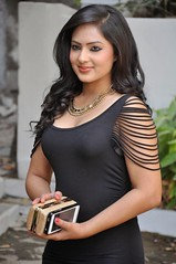 Indian Actress NIKESHA PATEL Hot Sexy Images Set-2  (100)