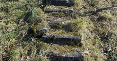 "Die Treppe. Die Treppen. Die Steintreppe. Die Steintreppen. Diese Steintreppe ist alt und verwittert. Auf den Stufen wächst Moos. • <a style=""font-size:0.8em;"" href=""http://www.flickr.com/photos/42554185@N00/34465063010/"" target=""_blank"">View on Flickr</a>"