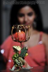 Bollywood  Actress SULAGNA CHATTERJEE Photos Set-1 (36)