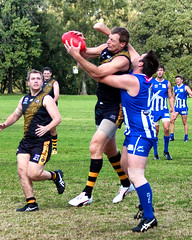 Troy Luff for Balmain Tigers V Norwest Sydney AFL May 2017 0005