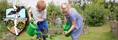 Gardening in the vegetable patch