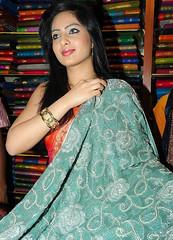 Indian Actress NIKESHA PATEL Hot Sexy Images Set-2  (33)