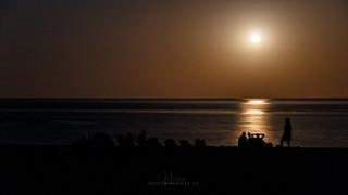 Bajo la luz de la luna II