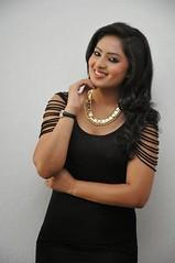 Indian Actress NIKESHA PATEL Hot Sexy Images Set-2  (99)